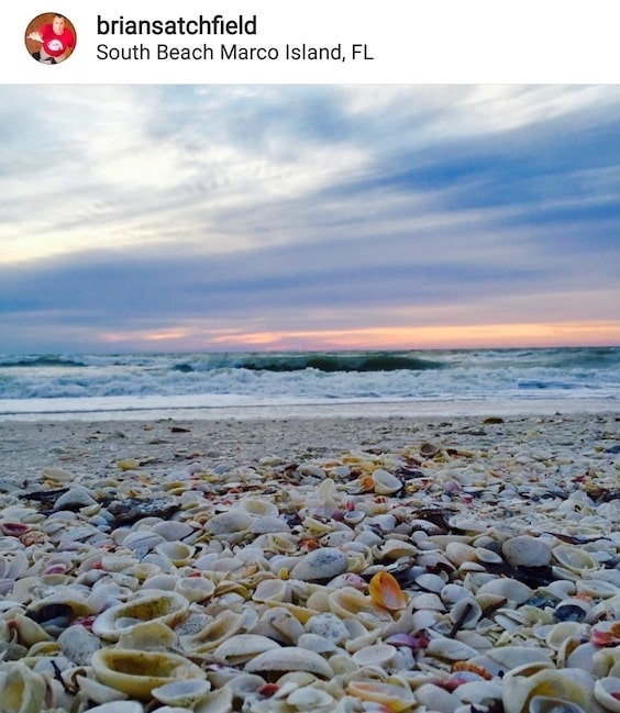 Marco Island Beach: 10 Best Shelling Beaches In Florida » Sand Dollar Shelling